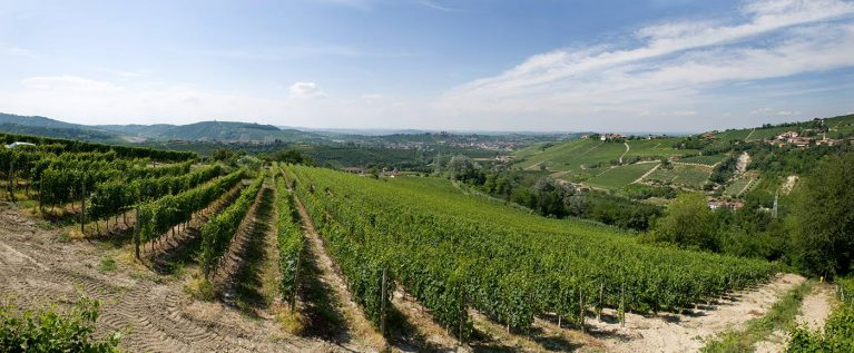 Bussia Vineyards, Monforte d'Alba